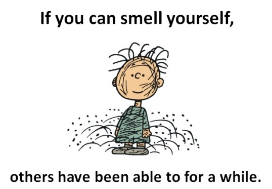 89067_ORIG-pig_pen_smelly_kid_peanuts_charlie_brown